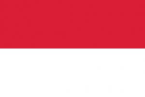 flag60